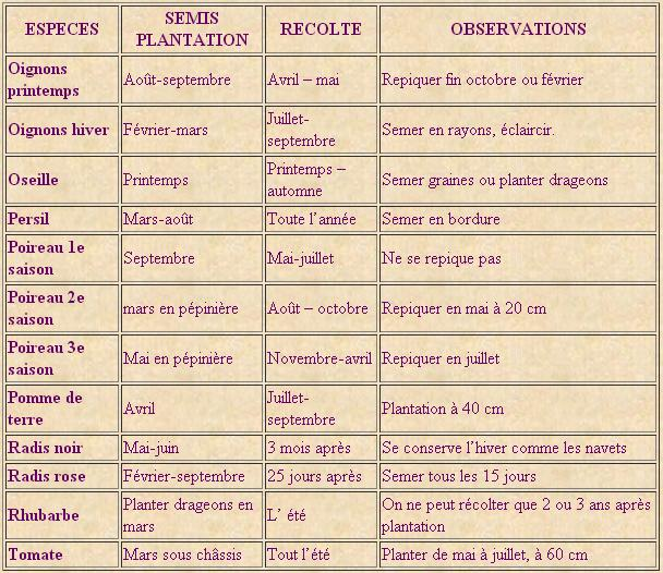 Periode de plantation potager photos de conception de for Calendrier du jardin