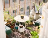 Potager de balcon : 3 règles d'or à suivre pour le réussir !