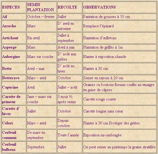 Le calendrier indispensable du potager - potager jardin | potager jardin